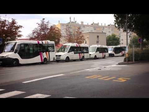 Free Public Transport Tallinn