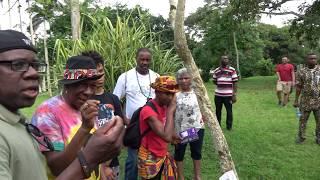 Moringa Tree Many Uses - Aburi Botanical Gardens - Ghana May 2018 Tour
