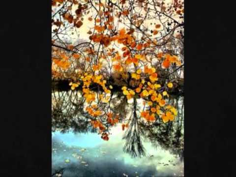 Ennio Morricone - Theme de Vatel - Jesuscm