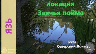 Русская рыбалка 4 река Северский Донец Язь под раскидистым деревом