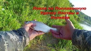 Рыбалка и Ловля на Поплавочную Удочку Плотвы и Уклейки - Видео