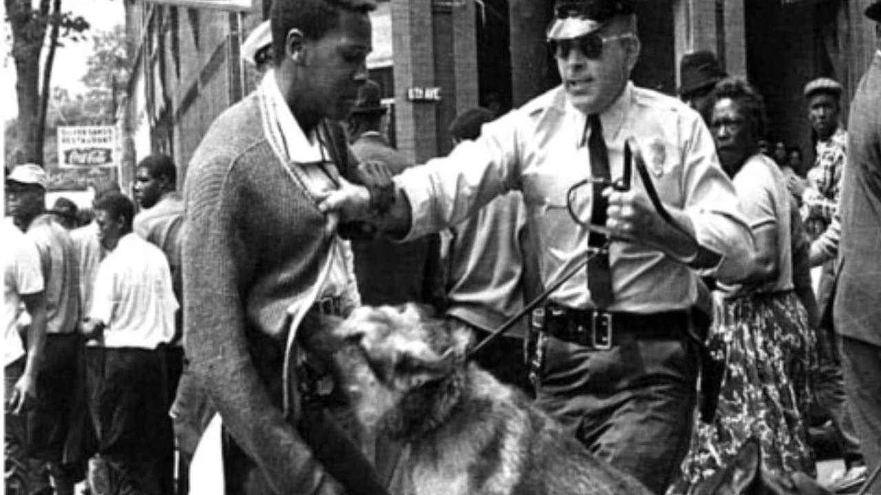 The Black Power Movement 3