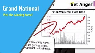 The Grand National - how to guarantee you pick the winning horse!