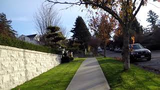 Walking in Vancouver BC Canada - West Side - 36th Ave - Residential Neighborhood/Houses