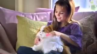 Интерактивная кошка Lulu FurReal Friends