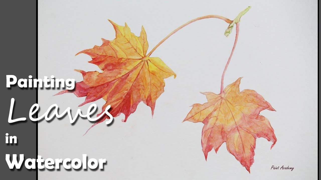 Watercolor Fall Autumn Leaf Maple Leaves Ahorn Efterars Blad