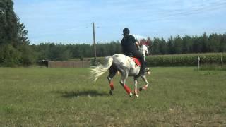 Vendredi 24 Aout 2012 Video 7
