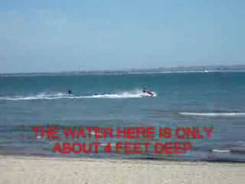 IDIOTS ON JET SKIS Isle of Wight Council are anti-dog