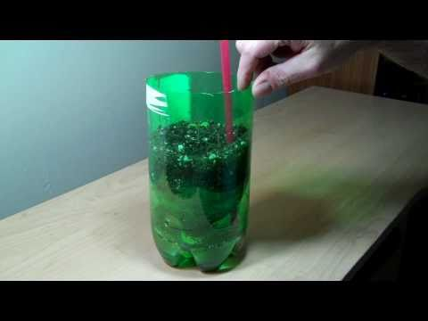 2-liter-bottle-self-watering-experiment-diy