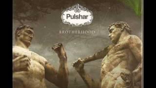 Pulshar - Golden Brown