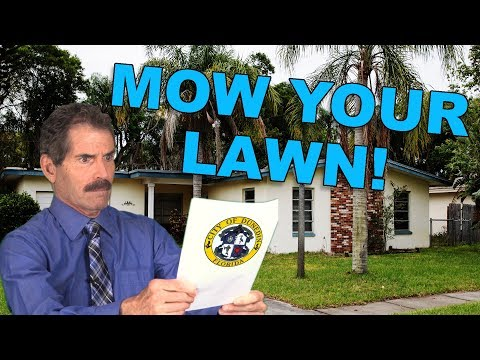 Babysitter - Man Fined $30K For Not Mowing His Lawn & Threatened Foreclosure