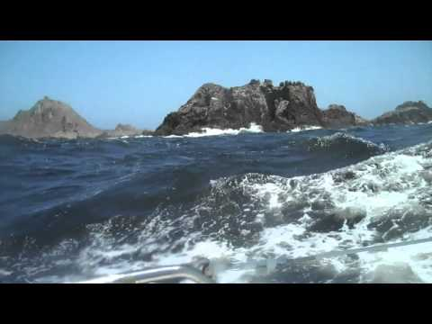 Single-handed sailing Farallones Race 2011