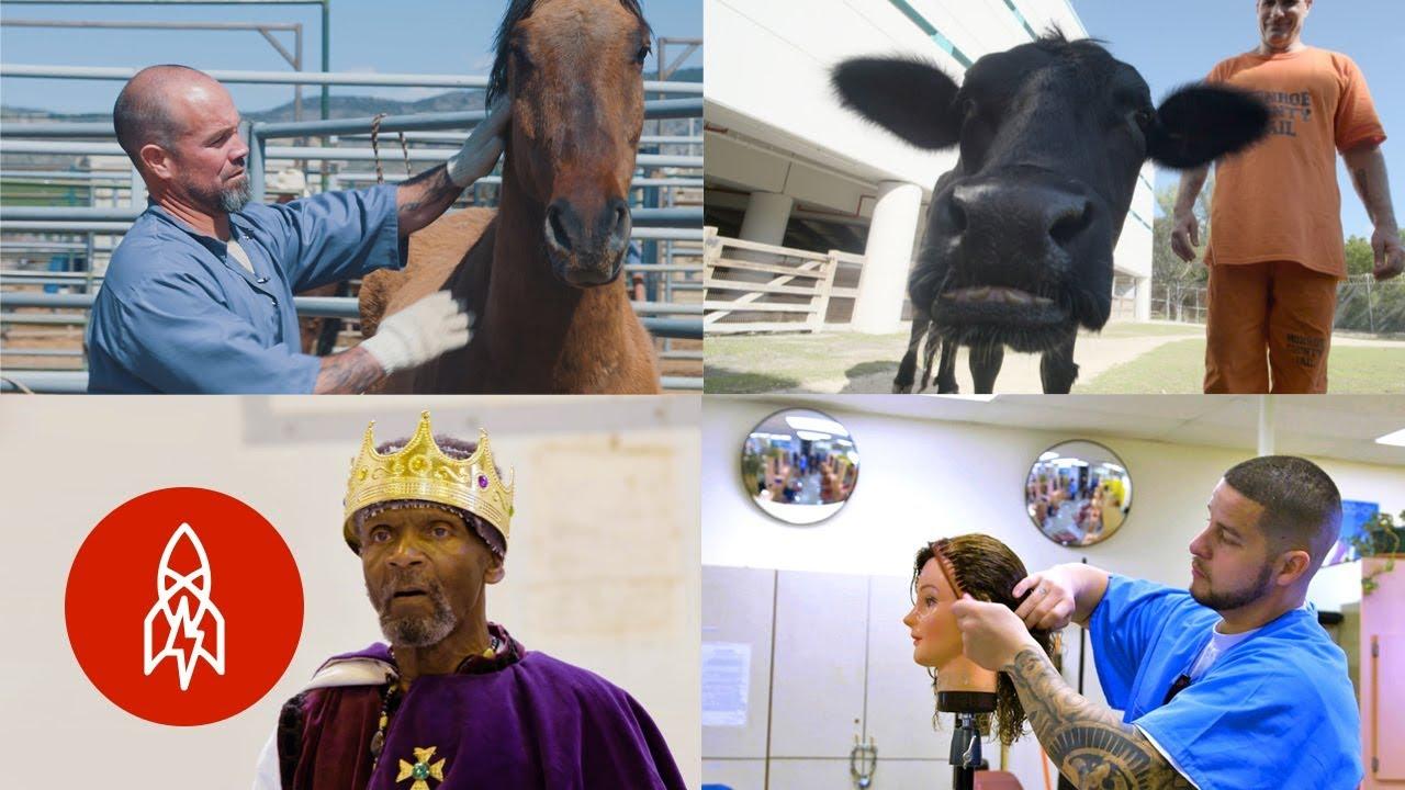Finding Freedom in Prison: Four Breakthrough Rehabilitation Programs