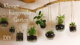 DIY   Kleiner hängender Garten für drinnen   schöne Pflanzendeko für`s ganze Jahr   Just Deko