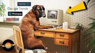 10 najbardziej przydatnych stron w internecie