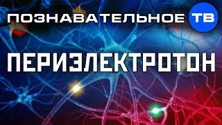 Периэлектротон. Восстановление здоровья и развитие способностей (Познавательное ТВ, Олег Мульцин)