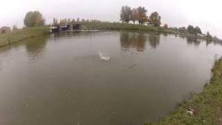 Ловля щуки на воблер. Рыбалка в Микулинцах. catching pike. fishing