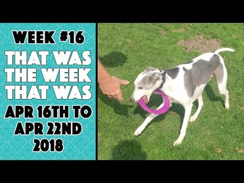 VLOG - That Was The Week That Was Apr 16th to Apr 22nd 2018