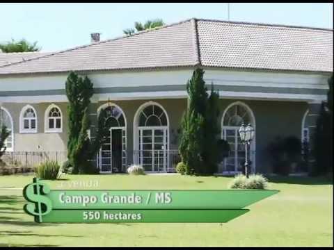 FAZENDA À VENDA EM CAMPO GRANDE / MS COM 550 HECTARES