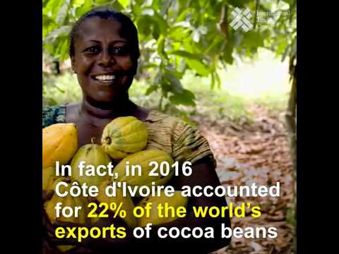 Biggest importers and exporters of cocoa and chocolate