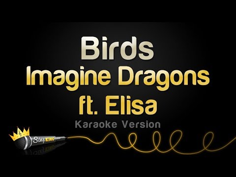 Imagine Dragons Ft. Elisa -  Birds (Karaoke Version)