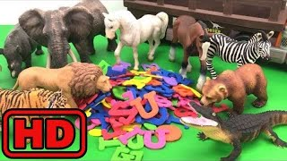 Kid -Kids -Learn Names Of Wild ZOO Animal And The Spellings/Learn Farm Animals/Hidden Toy Animals
