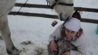 Лошадь Любовь