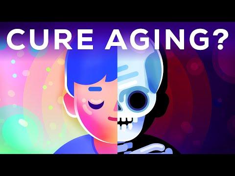 Wie man das Altern heilt - noch zu deiner Lebzeit?