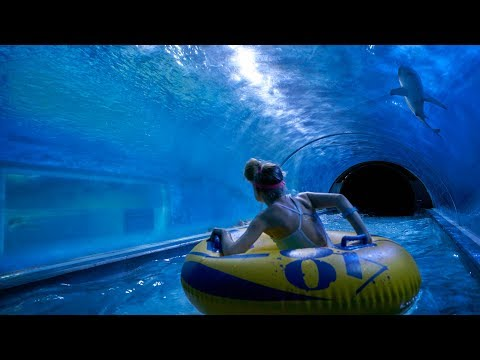 Scary Shark Water Slide at Aquapark Reda