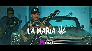 Miguel Ortiz Y El Nuevo Estilo - LA MARIA (Corridos Verdes 2019) VIDEO OFICIAL