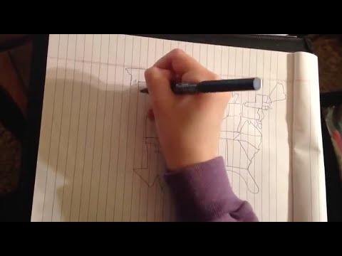 Time-Lapse: Drawing the United States Freehand