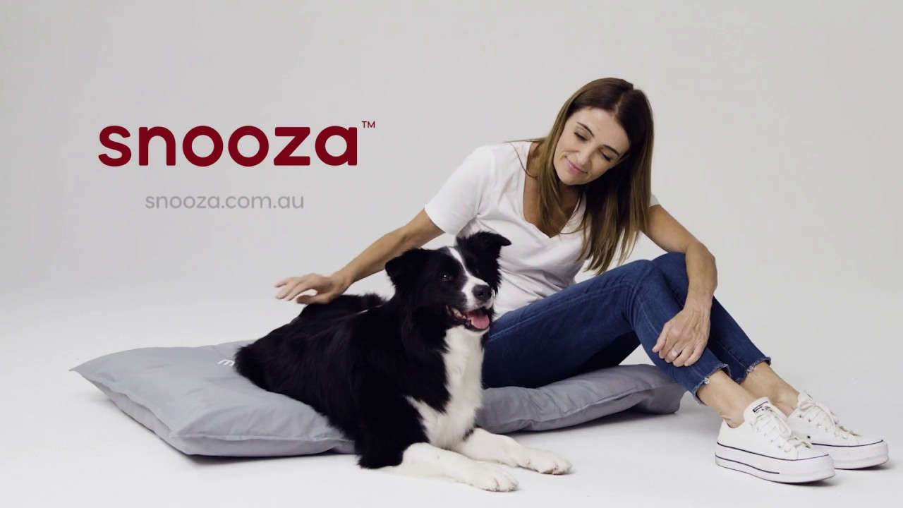 Organic Pet Futon Blue Snooza