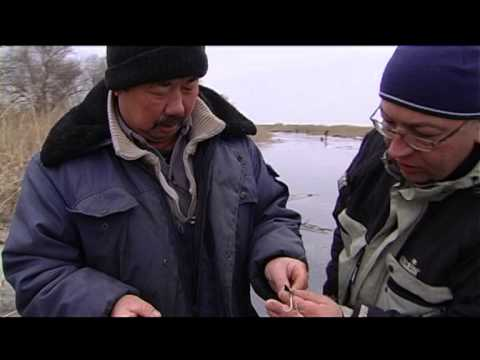 Передача рыбалка на колесах