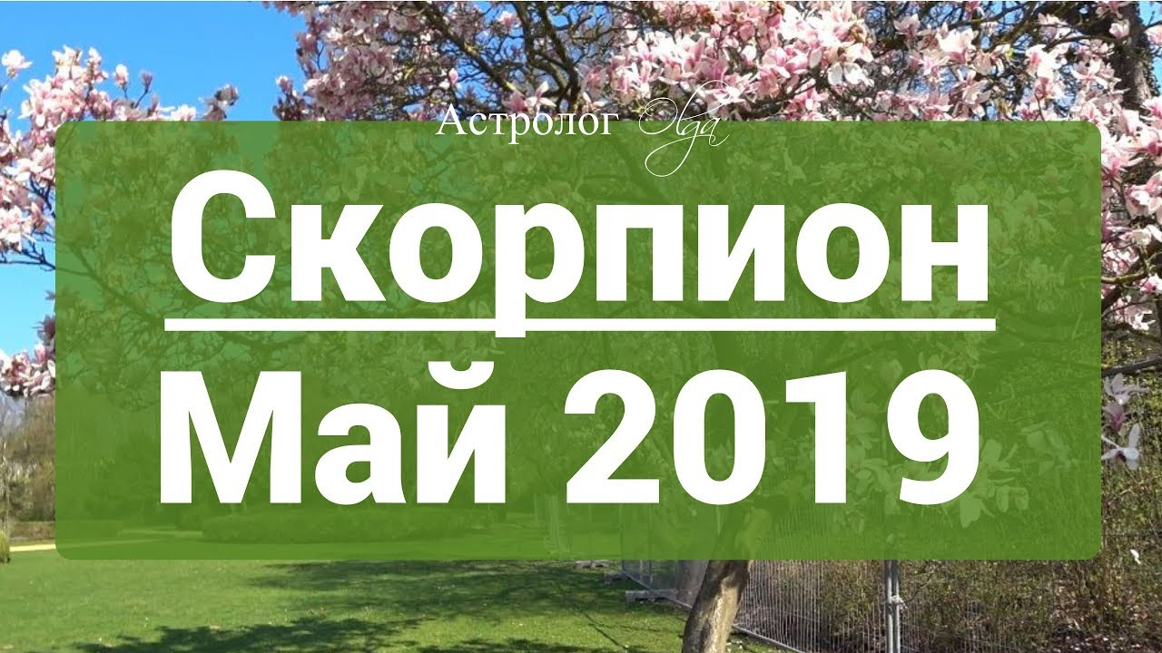 СКОРПИОН. Сатурн Ретро в 3 доме ГОРОСКОП на МАЙ 2019 астролог Olga