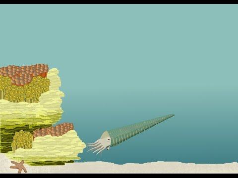 Ordovician Reef Ecosystems
