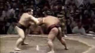 Extreme Sumo Fight