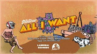 The Panturas - All I Want ( Lyric )