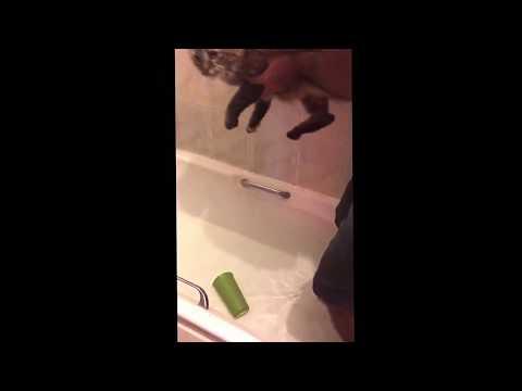 Cat hates baths