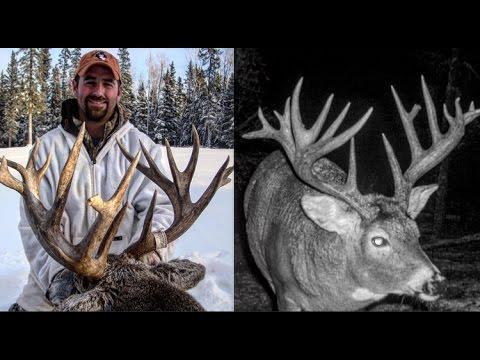 Saskatchewan Whitetail Hunt