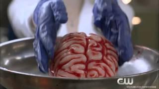 Я Зомби 2 сезон   Промо Трейлер HD