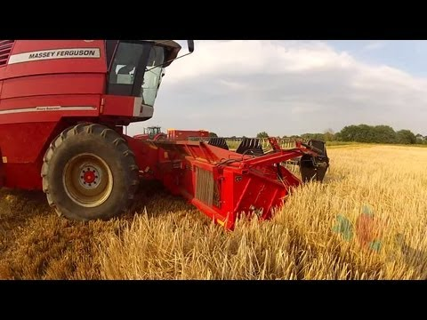 Ride On Board Combine Harvester (Massey Ferguson 40 RS) - GoPro POV