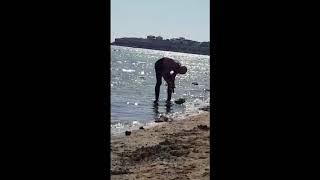 Жительницу Актау возмутил рыбак, потрошащий улов в море