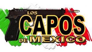Los Capos De Mexico - Comparame