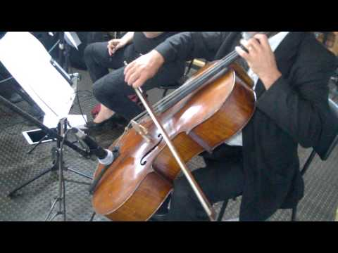 Thunderstruck cello