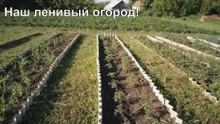 Ленивый огород, обзорная экскурсия