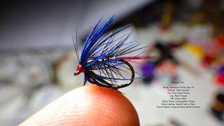 Tying Davie's Toe by Davie McPhail