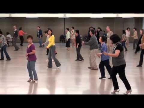 alligator-shoes-line-dance