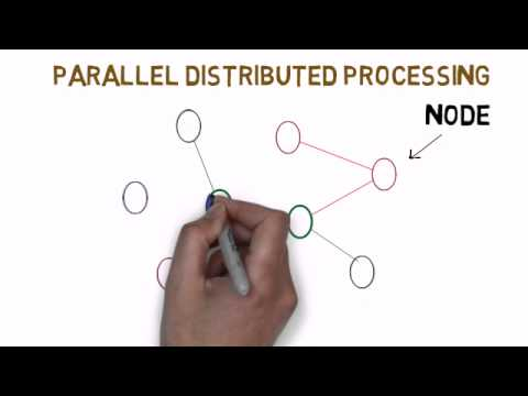 Parallel Distributed Processing (PDP)