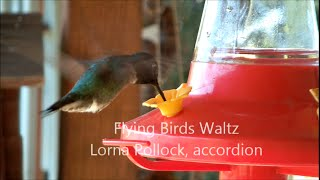 Flying Birds Waltz - Lorna Pollock, accordion