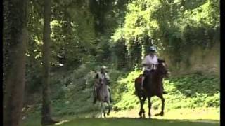 distanzreiten info video endurance riding german version